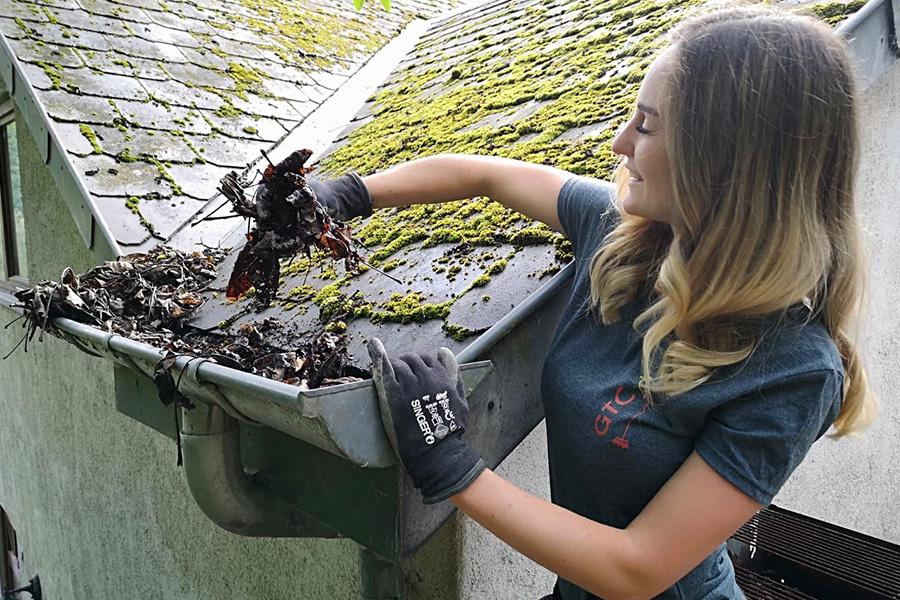 Gtp-Corp Nettoyage, Entretien, Petits travaux, Réparation, peinture, jardinage